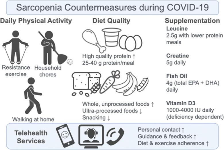 sarcopenia countermeasures during lockdown